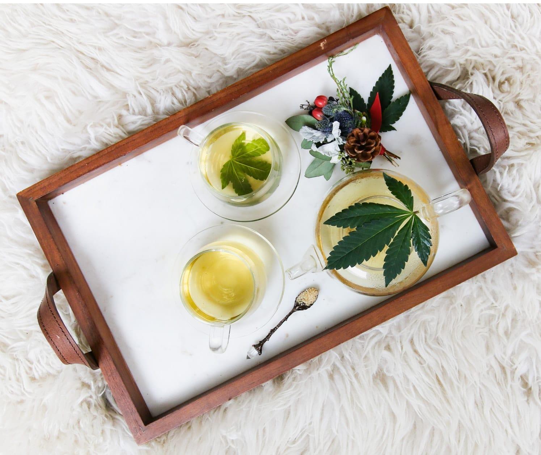 Jak to vypadá s legalizací marihuany v ČR? 1